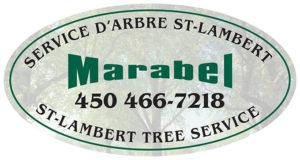 Service d'arbres Marabel